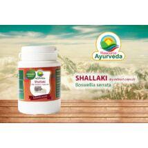 Shallaki, 60 kapszula