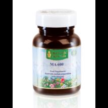 MA 600, Vasban gazdag gyógynövény koncentrátum (Herbal Iron Rich), 60 tabl/ 30 G